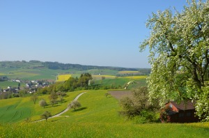 Farmers play a big part in making Switzerland the beautiful country it is.